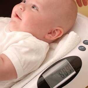 babywaage-testsieger