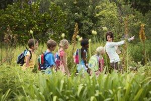 Klasse bei einem Ausflug in der Natur