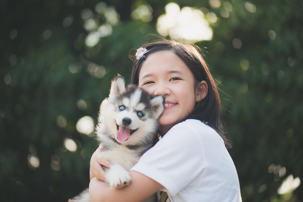 Haustiere-Kinder-Ratgeber