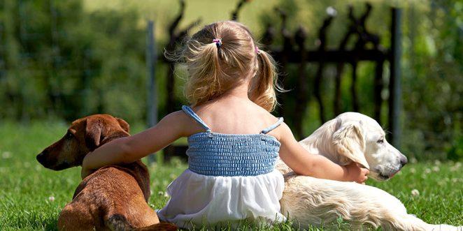 Kinder Und Haustiere Das Sollten Sie Vor Der Ersten Anschaffung