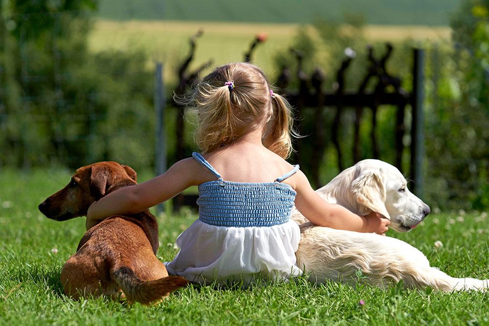 Haustiere für Kinder kaufen