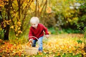 kind sammelt laub im garten