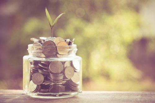 Kleingeldglas mit Pflanze