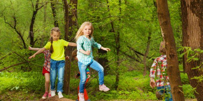 Spiele-im-Wald-Ratgeber