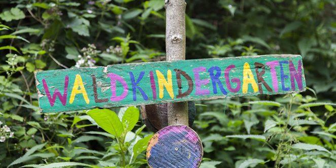 Waldkindergarten Informationen