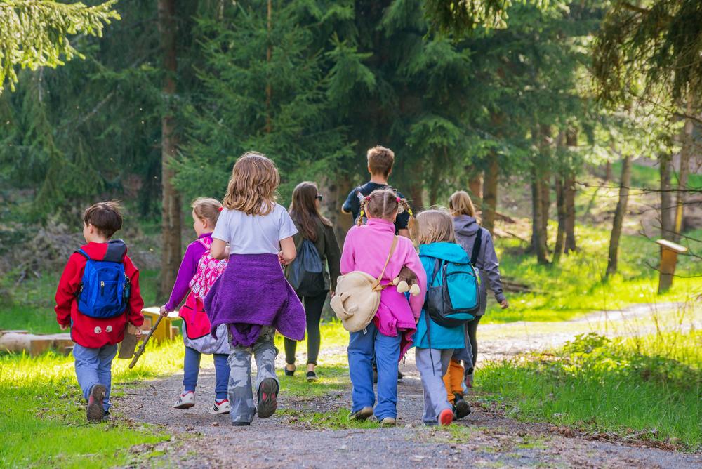 Waldkindergarten-Ratgeber