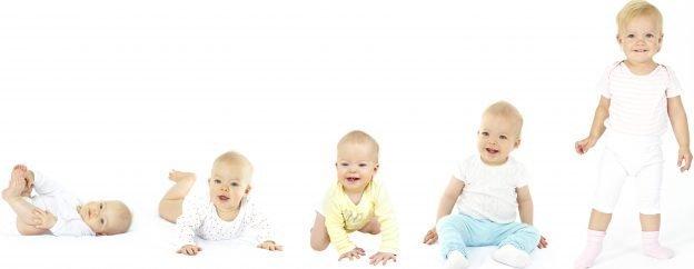 Ihr Baby durchläuft verschiedene Entwicklungsphasen
