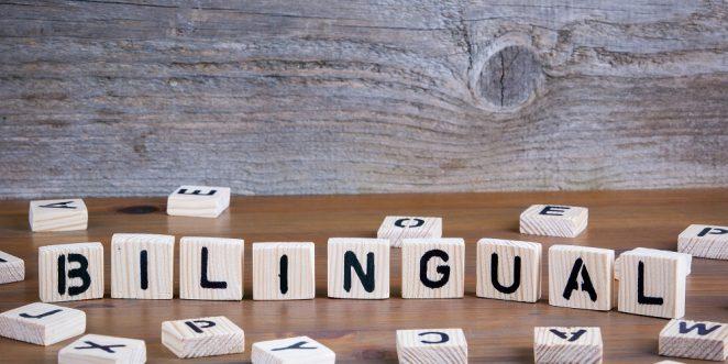 steine bilden das wort bilingual