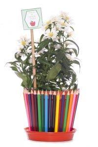 Blumentopf aus Stiften