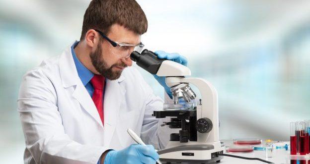 Chorionzottenbiopsie als Voruntersuchung