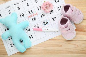 Eisprung im Kalender eingetragen