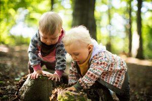 Kinder untersuchen einen Baumstamm und fördern so ihre frühkindliche Entwicklung