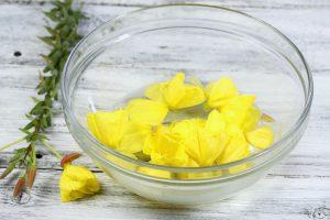 Bachblüten in einer Schale mit Wasser