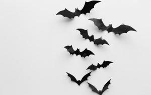 Fledermäuse aus Pappe