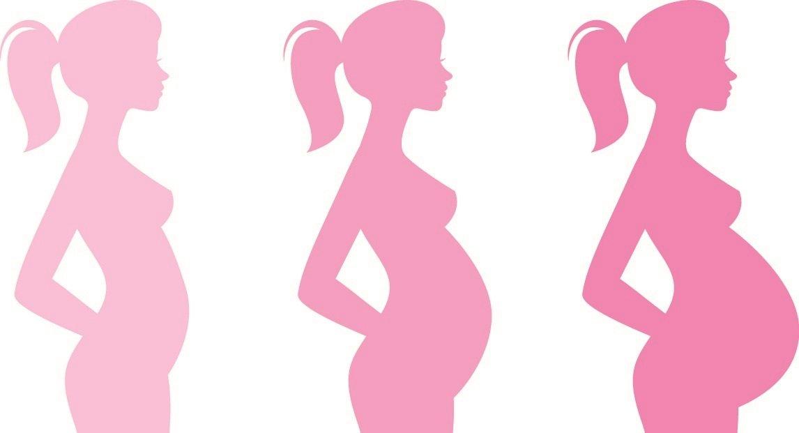 bild einer zunehmend schwangeren frau