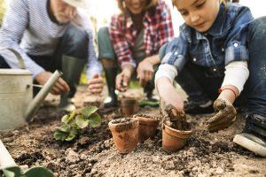 Mit Gärtnern Kreativität fördern