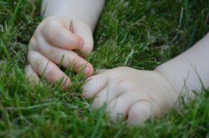 Babyhände im Gras