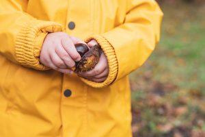 Kastanie in Kinderhänden