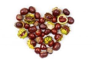 rotbraune Kastanien in Herzform