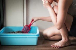 eine junge frau saeubert ein katzenklo und haelt sich die hand an die nase