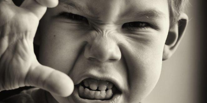 Aggressive Kinder-Ratgeber