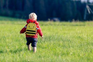 kleines junge mit rucksack auf der wiese