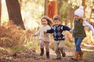 Kinder spielen im Wald.