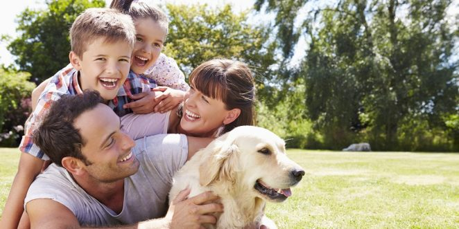 Kinderfreundliche Hunde