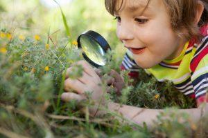 kleiner junge liegt mit einer lupe in der hand im gras