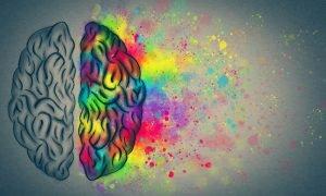 Gehirn in bunten Farben