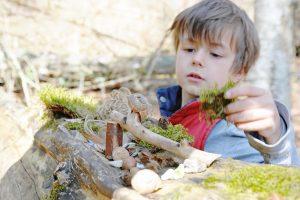 Junge baut etwas aus Naturmaterialien