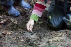 kinder erleben naturpaedagogik hautnah