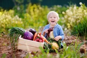 ein Junge mit einem Korb voller frisch geernteter Nahrungsmittel