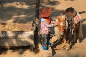 kleiner als Cowboy verkleideter Junge steht neben einem Pony