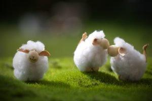 drei gebastelte Schafe auf einer Wiese