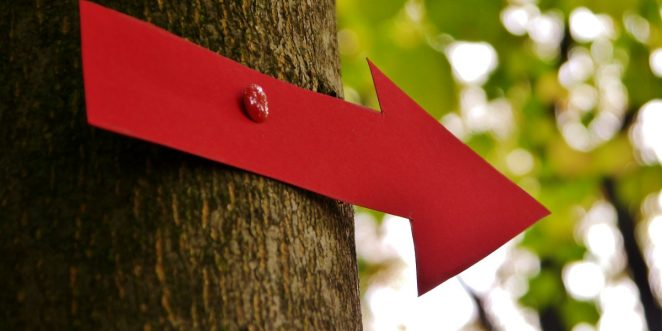 roter Pfeil an einem Baum