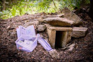 Hinweise und Aufgaben im Wald versteckt