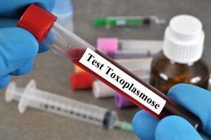 blutroehrchen mit der aufschrift test toxoplasmose