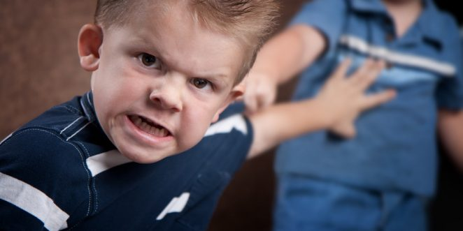 Wutausbrüche-bei-Kindern-Ratgeber
